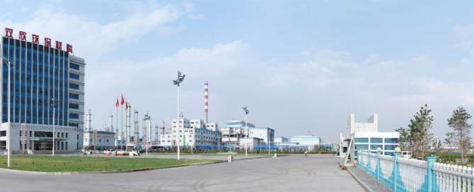 Resina PVA di Shuanxin Inner Mongolia